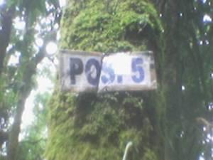 Foto(938)